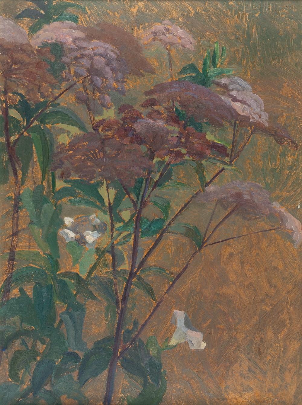 Französisch – Fleurs des marais (Sumpfblumen)