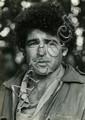 Meir Ariel (1942-1999)