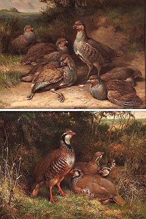 HENRY WILLIAM CARTER (ACT 1867-1954, BRITISH)