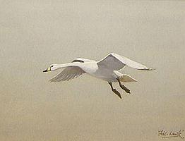 DAVID WOLFE-MURRAY (FISHAWK), SIGNED, WATERCOLOUR,