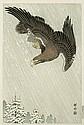 A WOODBLOCK PRINT BY OHARA KOSON (1877-1945). Oban. Eagle. Edited by Watanabe Shozaburo (Seal used 1931-41).