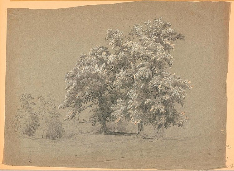 RIVE, PIERRE-LOUIS DE LA (1753 Geneva 1817) Trees in flowe