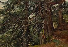 CALAME, ALEXANDRE(Vevey 1810 - 1864 Menton)Sapins