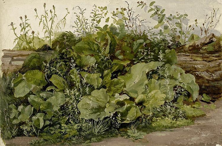 REINHARDT, LUDWIG (LOUIS)(1849 - 1870