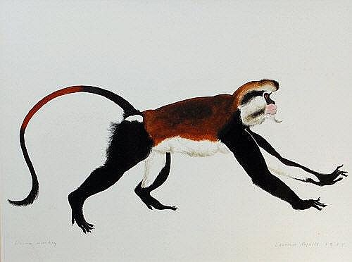 Lawrence Mynott (Brit. b.1954) - Diana Monkey,