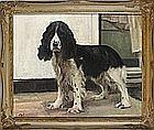 * Campbell G. TROTMAN, (20th Century), Oil on canvas, 'Watha' - portrait of an English Springer Spaniel, Inscribed on label to verso, Signed with initials, 15.25