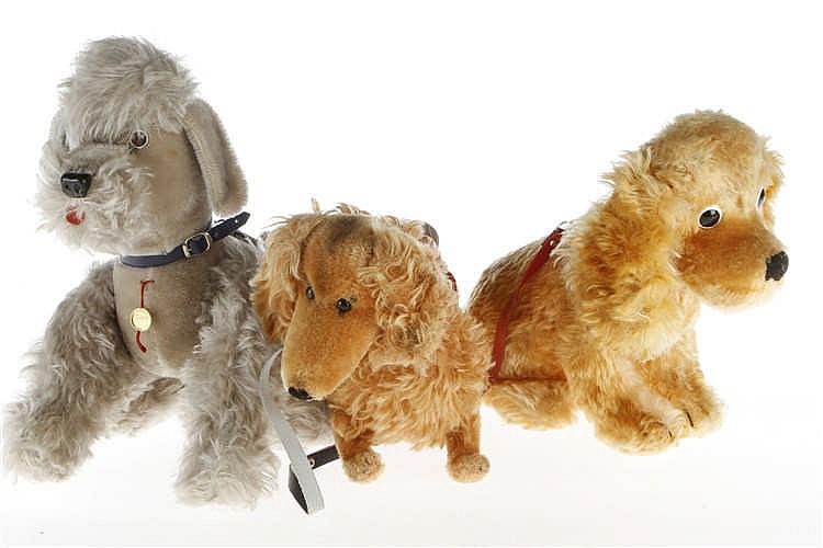 3 versch. Hunde