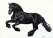 LAWRENCE STARKEY born 1959 Friesian Black 2011 oil