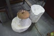 Set of 3 Painted Tree Stumps
