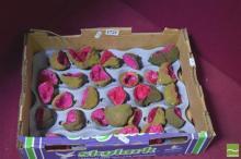 Box Of Pink Split African Geodes