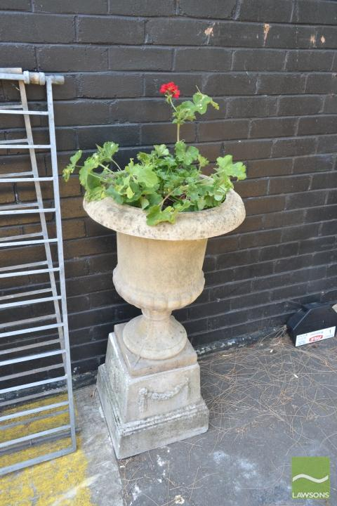 Concrete Planter Raised on Base Planted with Geraniums