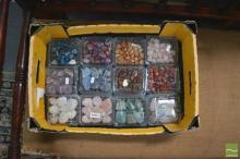 12 Containers Polished Samples