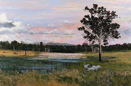 <b><FONT size=3>†</FONT></b>PAMELA GRIFFITH, ''Brolgas at Rosedale Cattle Station - Qld'', oil ,signed lower right,  90 x 135 cm