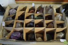 12 Polished & 12 Natural Geology Pieces (24)