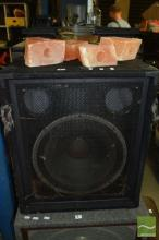 Electro Voice Stage Speaker