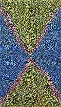 Margaret Turner Petyarre - Medicine Leaves 145 x 90cm