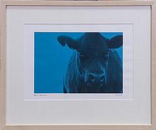 S.S. Hunt, Digital print of cow in blue pixel, 23 x 34cm