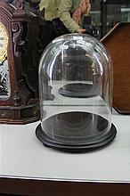 Medium Height Glass Dome - H: 36 cm
