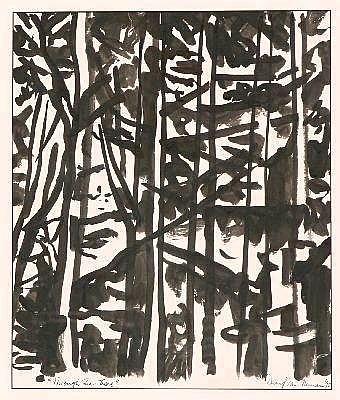 DAVID VAN NUNEN (1952 - ) - Through the Trees, 1995 53 x 57 cm
