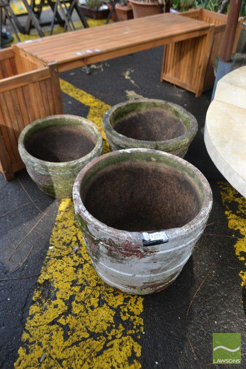 Collection of Concrete Planters