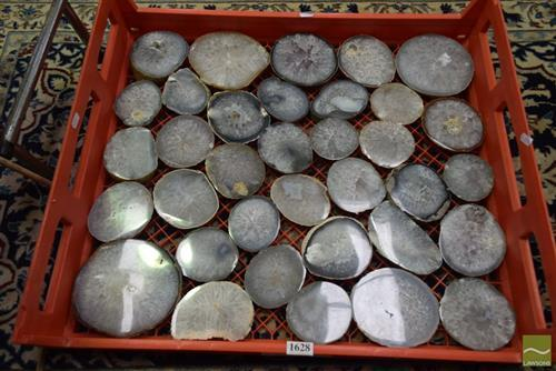 Large Quantity of Polished Geode Slices