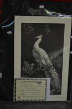 Lionel Lindsay, Quantity of (9) facsimile etchings, 'The White Peacock' (each with copy of certificate)
