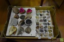 Box & Tray of Assorted Geology Specimens