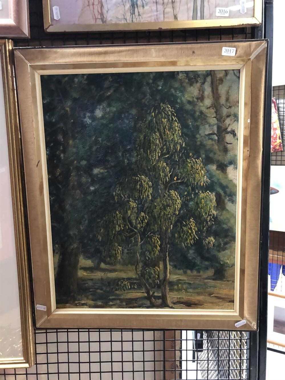 Shirley Rouen - Untitled (Tree Study) 49.5 x 39cm
