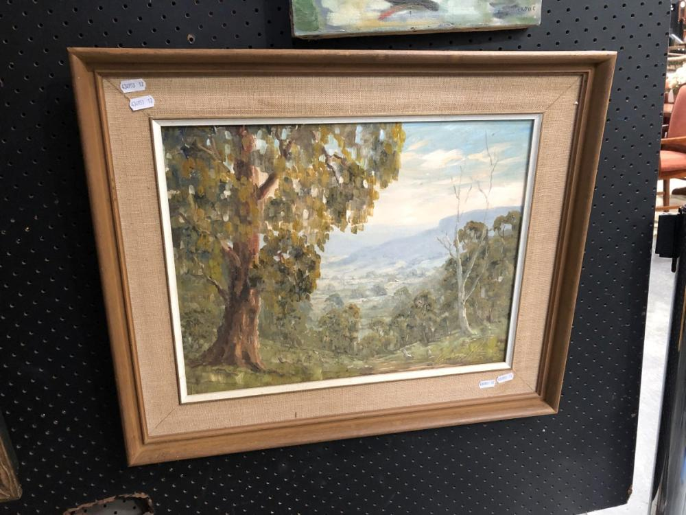 Ronald Peters - 'Scene at Kangaroo Valley', oil on board, frame size - 50 x 60m, signed lower right
