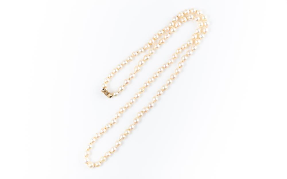 A SEMI BAROQUE CULTURED PEARL NECKLACE; 7 - 7.2mm round pearls of cream colour and medium lustre to a 14ct gold bow shape clasp set...