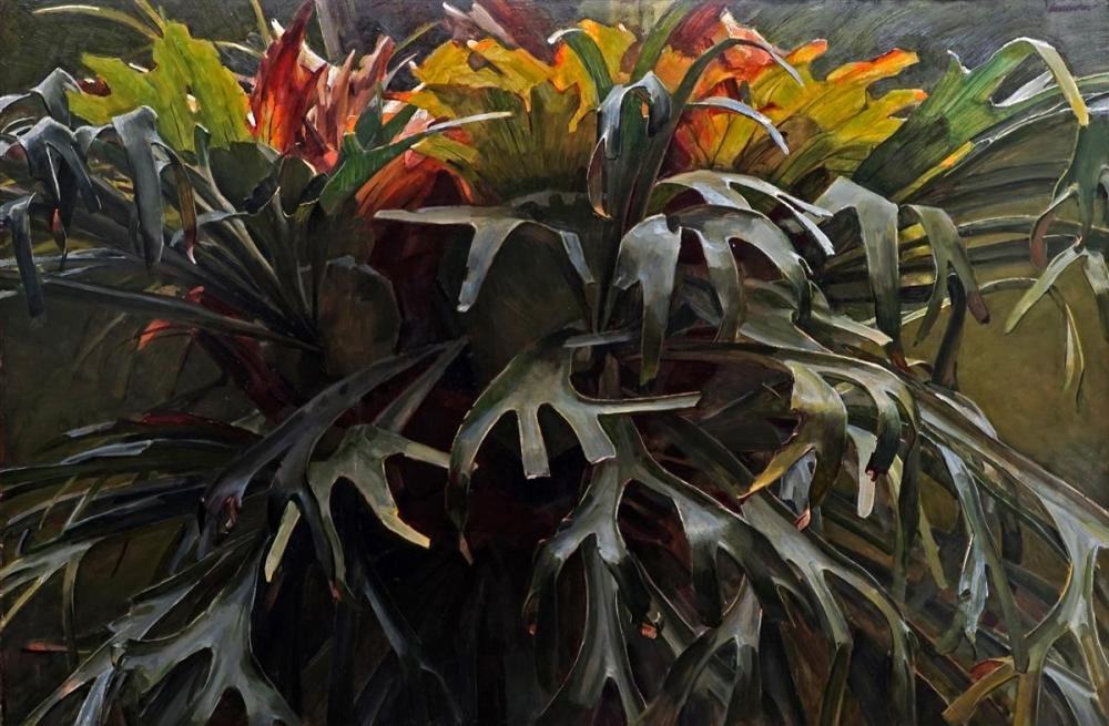 Robert Hannaford (1944 - ) - Staghorn Fern 135 x 196cm