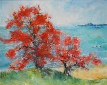 Essie Nangle (1915 - 2006) - Coral Trees, Nambucca Heads 59.5 x 74.5cm