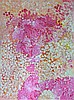 Polly Ngale (1915 - ) - Bush Plums 200 x 150cm, Polly Ngale, Click for value