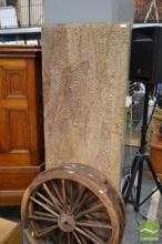 Mounted Barramundi Skins