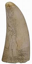 Scrimshaw Whales Tooth