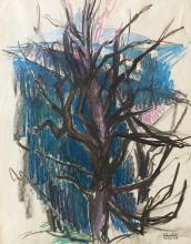 Bare tree (maple)