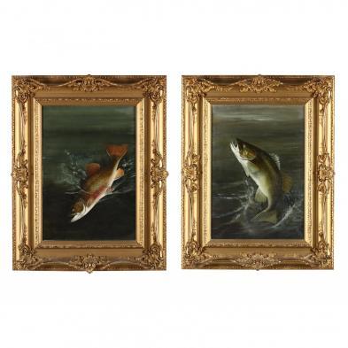 Harry Driscole (NY, 1861-1923), Pair of Fish Portraits
