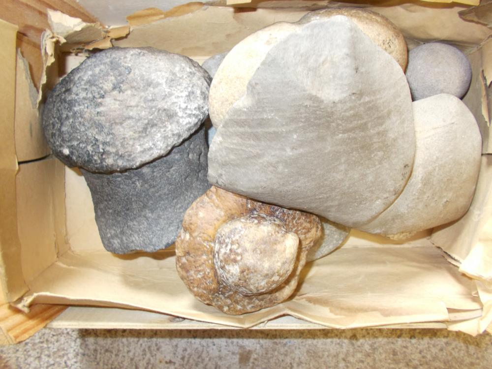 Boxed Group Of Stone Items- Club Head, Hammer, Stones, Pendant, Fossels, Etc.