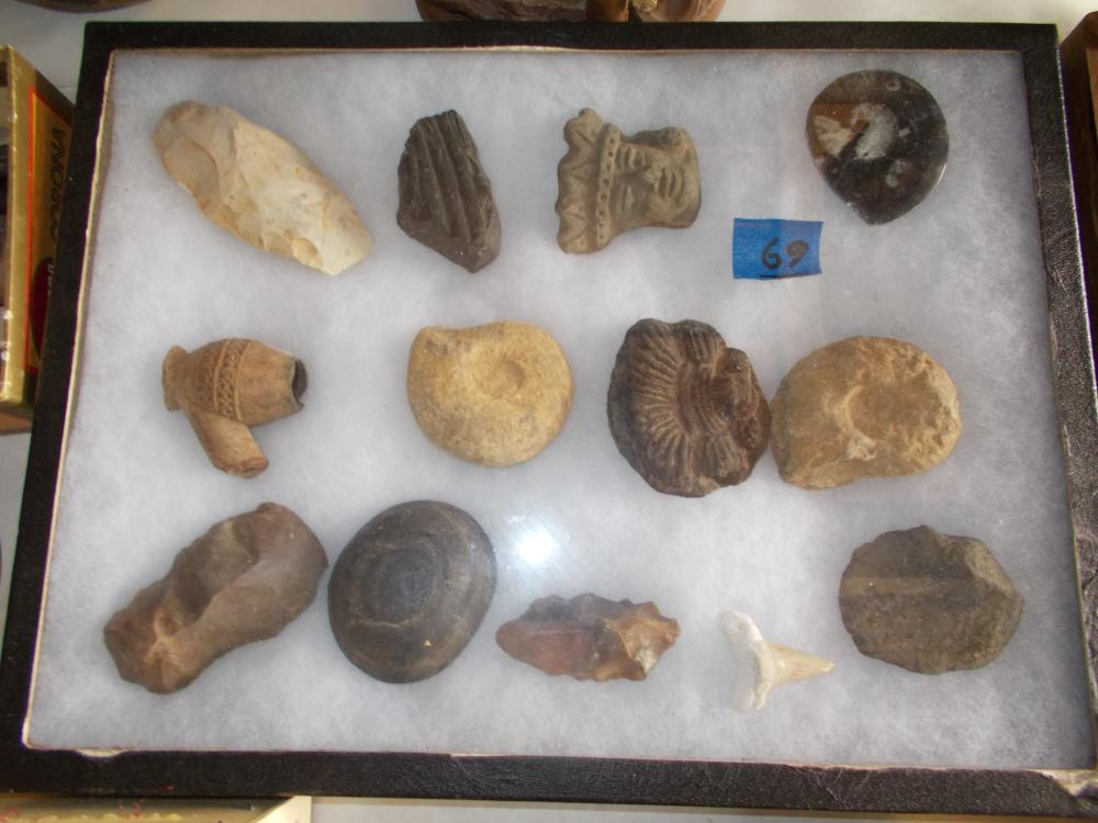 Rikermount Collection- Fossels, Mexican Clay Heads, Celt, Etc.