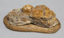 Petrified wood sculpture with stand