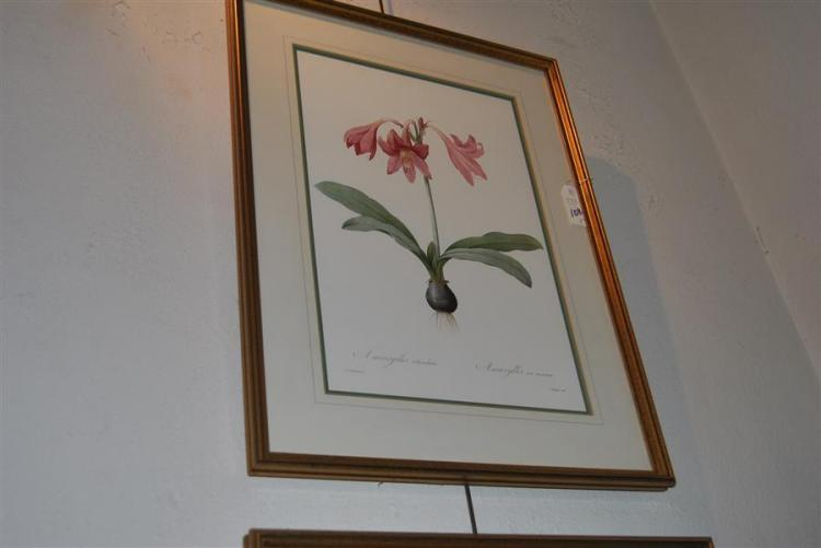 Pair of framed floral prints, printed in England