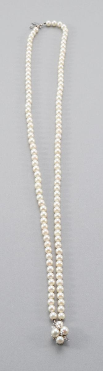Double Strand Choker Pearl Necklace