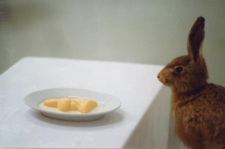 Pepe Smit Hares Dessert Color Photograph 1992