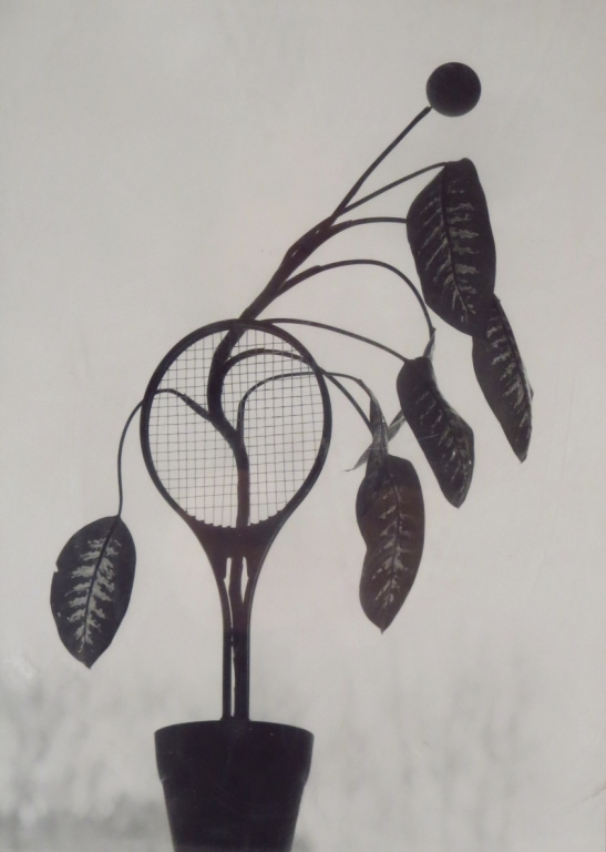 Naomi Savage,Am,Flowering Tennis Raquet,photograph
