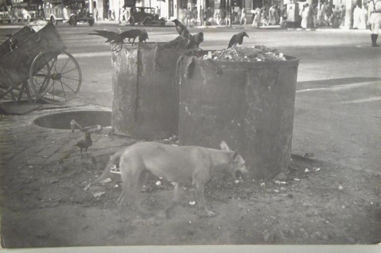 Cecil Beaton, British, 1904-1980,