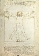 Leonardo Da Vinci - Hombre Vitruviano.