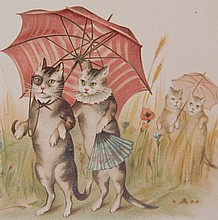 Nine Small 20th Century Books About Cats