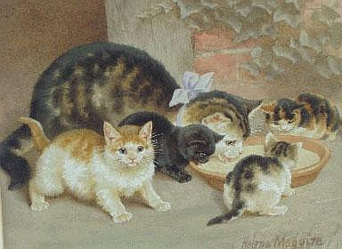 HELENA MAGUIRE, 1860-1909 A mother cat and four