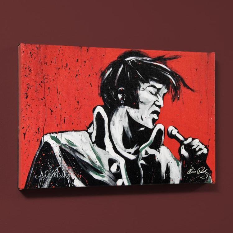 Elvis Presley Revolution By David Garibaldi