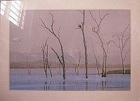 KIM DONALDSON (b.1952), 'Kiraba Fish Eagle',